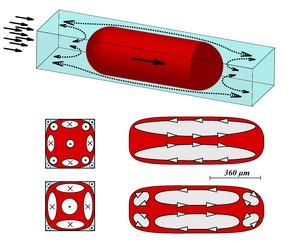 Kropla substancji chemicznej (czerwony) płynąca przez mikrokanał o przekroju prostokątnym nie wypełnia go w całości. Ciecz nośna (niebieski) opływa kroplę wzdłuż narożników kanału. Przekroje poniżej przedstawiają widok kropli wzdłuż osi kanału oraz prostopadle do niej i obrazują, jak zmienia się rozkład wirów wewnątrz kropel wraz ze wzrostem prędkości cieczy nośnej. (Źródło: IChF PAN)