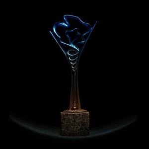 Statuetka Dream Chemistry Award i 15 000 euro czekają na chemika-wizjonera z najciekawszym przyszłościowym projektem badawczym. Konkurs Dream Chemistry Award jest organizowany dla młodych naukowców przez Instytut Chemii Fizycznej Polskiej Akademii Nauk w Warszawie. Źródło: IChF PAN,Grzegorz Krzyżewski.