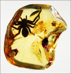 Bursztyn — jedyny kamień szlachetny pochodzenia roślinnego. Wtym roku 80 tys. Chińczyków obejrzało wystawę polskiego bursztynu